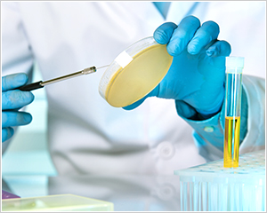 official_serv_genotoxicity_ph02