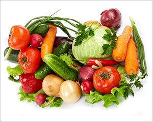農薬の安全性試験